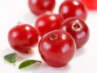 el arándano rojo o cranberry
